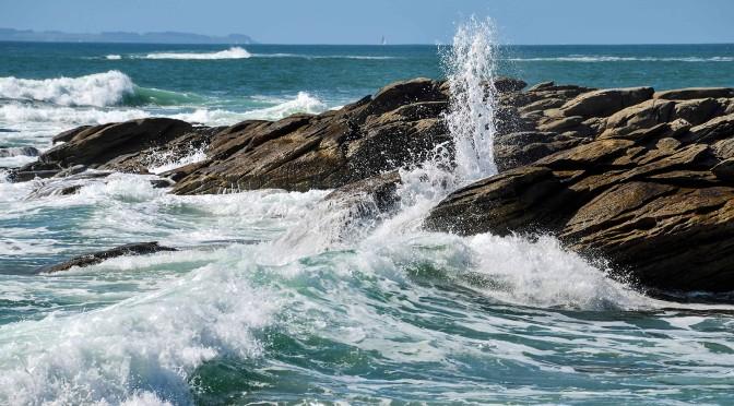 An Ocean of Puns